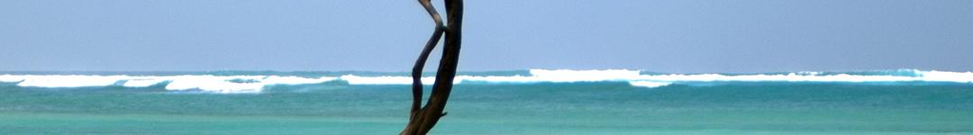 hawaii-pghdr